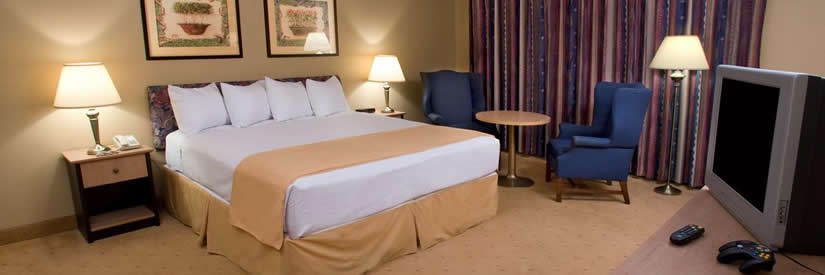 best western fallsview king bed